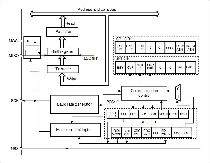 stm32 spi lecture 7   spi functional block diagram explanation